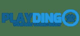 play dingo nettikasino